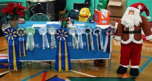 judges table rosettes